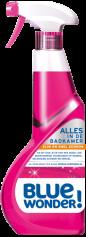 Sanitarreiniger 750 ml spray